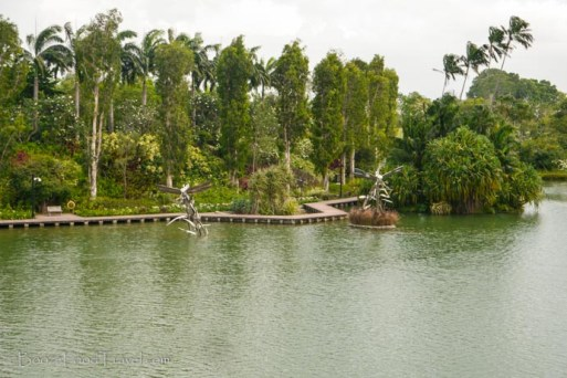 Dragonfly lake