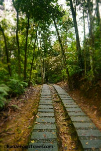 Xuanguang Temple trail