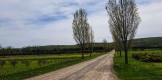 columbia trail