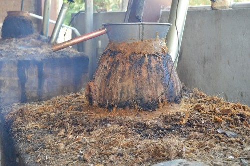 Distilling mezcal/Photo: Debra Rosenthal