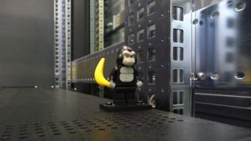Un gorilla LEGO tra i computer del CERN (da Symmetry Magazine)