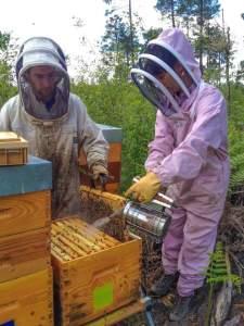 productuers miels bio