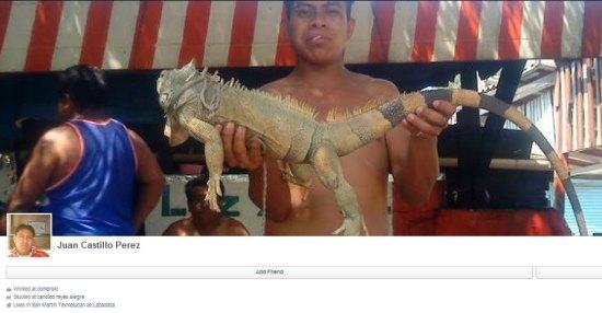 Juan Castillo Perez lets his pit bulls kill cats for fun and profit.