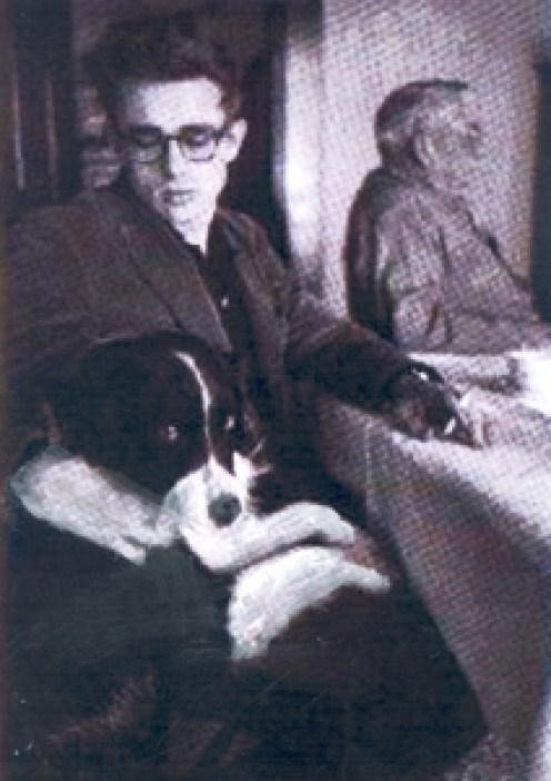 dean_dogf