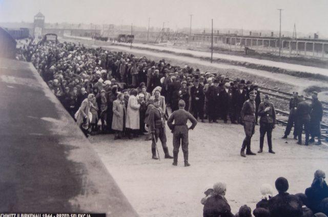 The selection process at Birkenau.