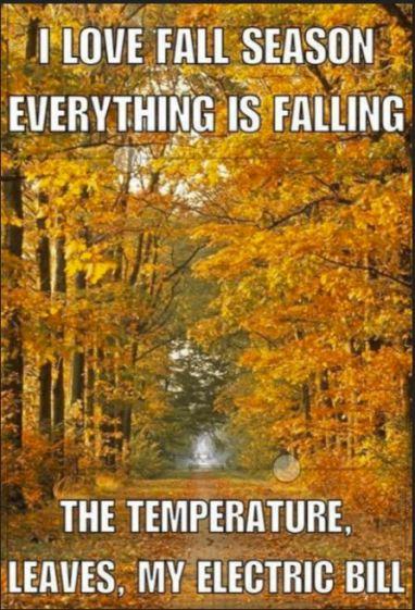 FallRunning.JPG