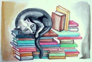 zorro libros