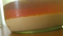Bottom fermenting yeast