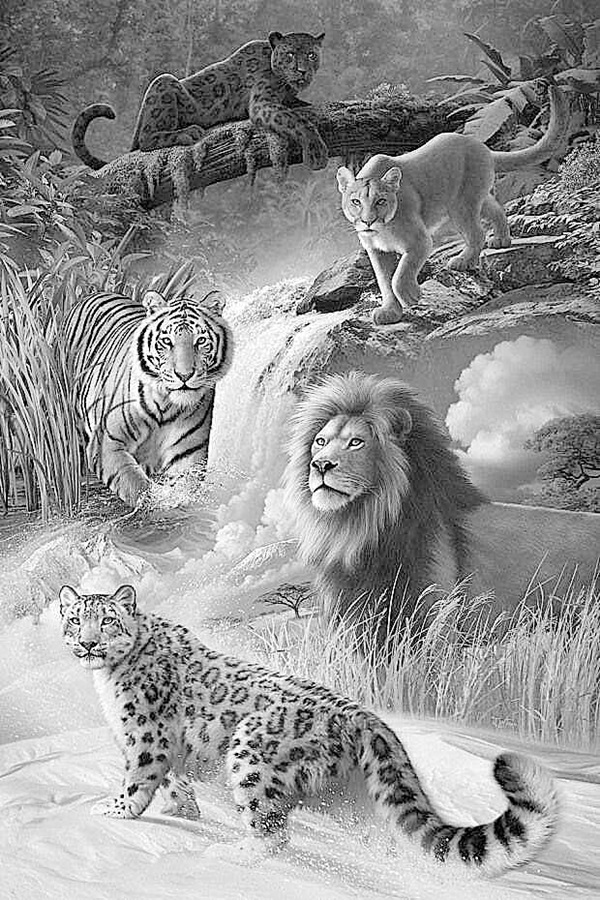 40 Realistic Animal Pencil Drawings | free coloring pages animals realistic
