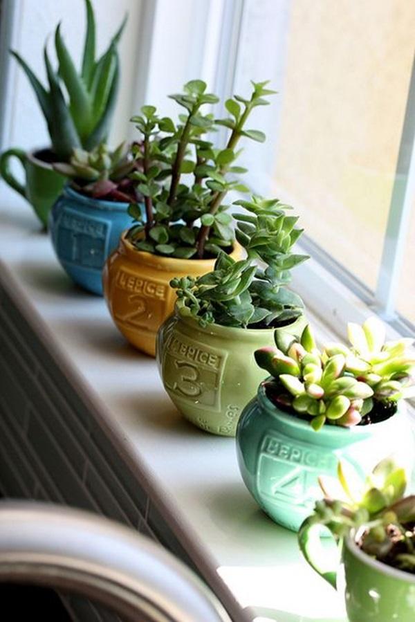 smart mini indoor garden ideas 15