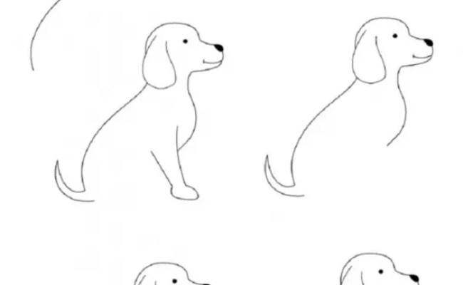 How To Draw Easy Animals Photofun4ucom