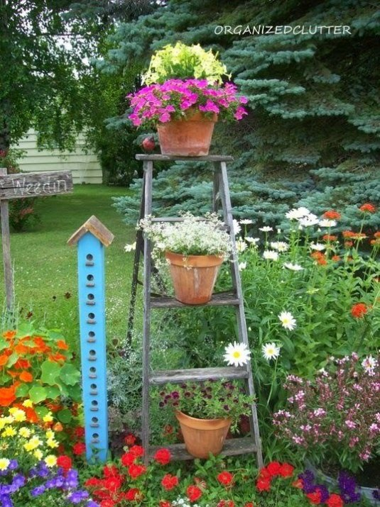 how-to-add-vertical-interest-to-your-flower-beds-containers-container-gardening-flowers-gardening