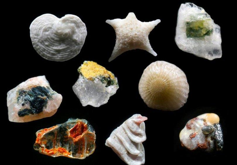 sand-grains-under-microscope-gary-greenberg-3