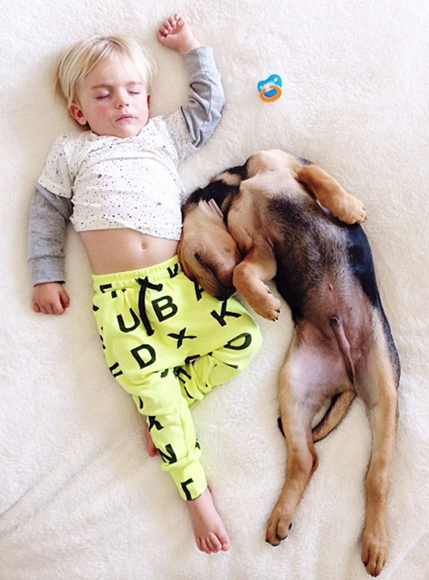 toddler-naps-with-puppy-theo-and-beau-2-12.jpg