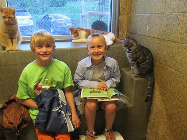 reading-children-shelter-cats-book-buddies-12