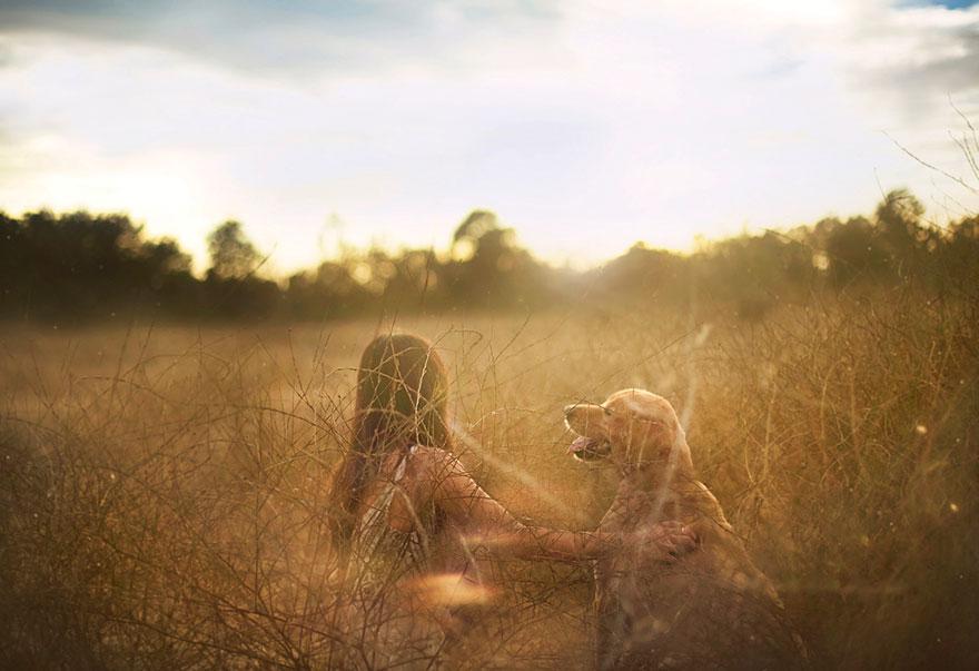 dog-photography-chuppy-golden-retriever-jessica-trinh-2