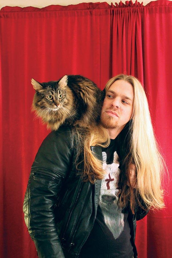 metal-cats-alexandra-crockett-8