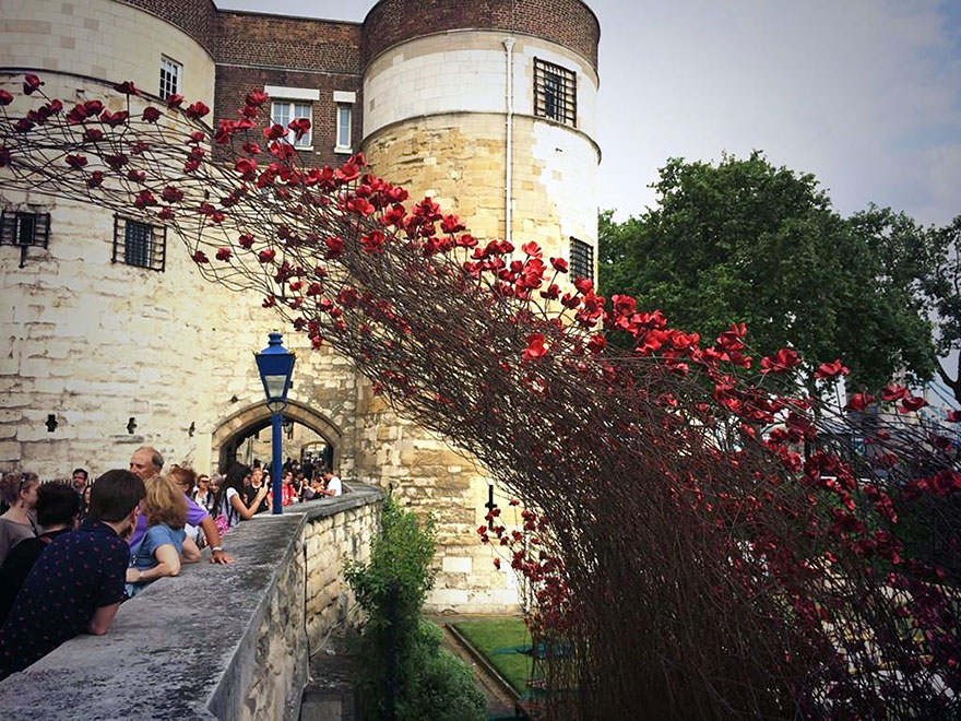 ceramic-poppies-first-world-war-installation-london-tower-7