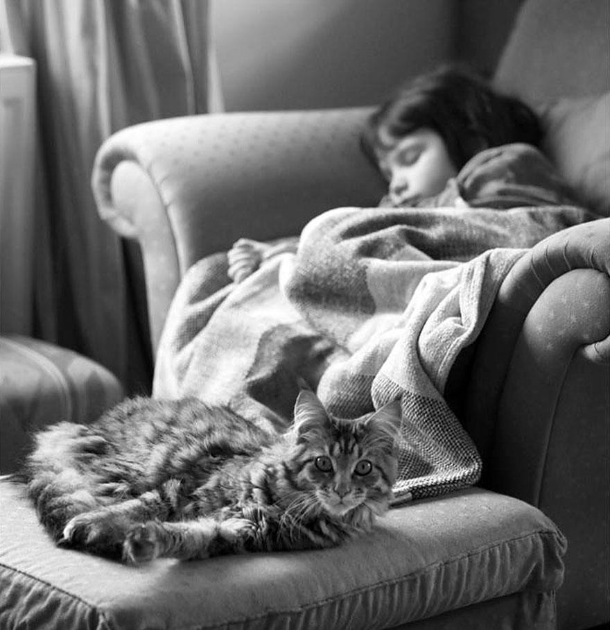 thula-therapy-cat-autistic-artist-iris-grace-28