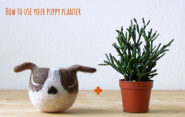 adorables-macetas-fieltro-animal-planter-stella-melgrati (9)