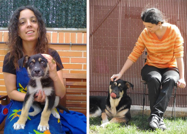 antes-despues-perros-creciendo-(21)