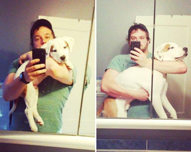 antes-despues-perros-creciendo (24)