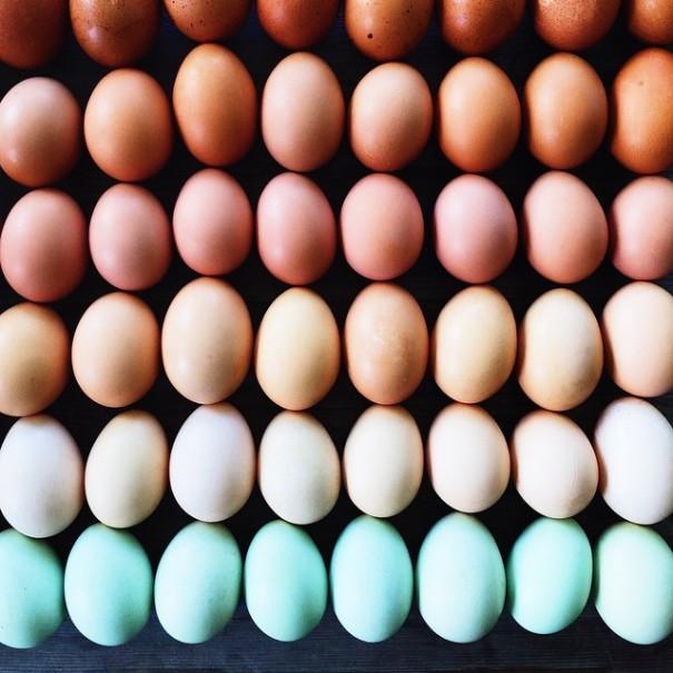 fotos-comida-ordenada-colores-foodgradients-brittany-wright (3)