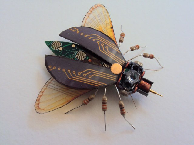 insectos-alados-componentes-electronicos-julie-alice-chappell (7)