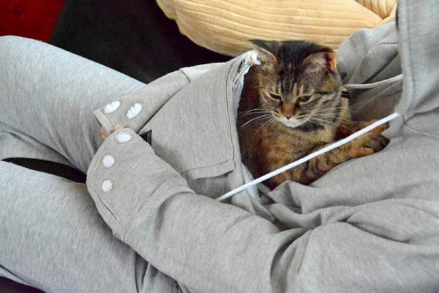 sudadera-bolsillo-gato-mewgaroo-unhabitat (11)