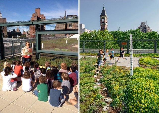escuelas-publicas-nueva-york-paneles-solares (10)