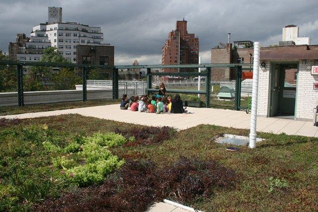 escuelas-publicas-nueva-york-paneles-solares (2)