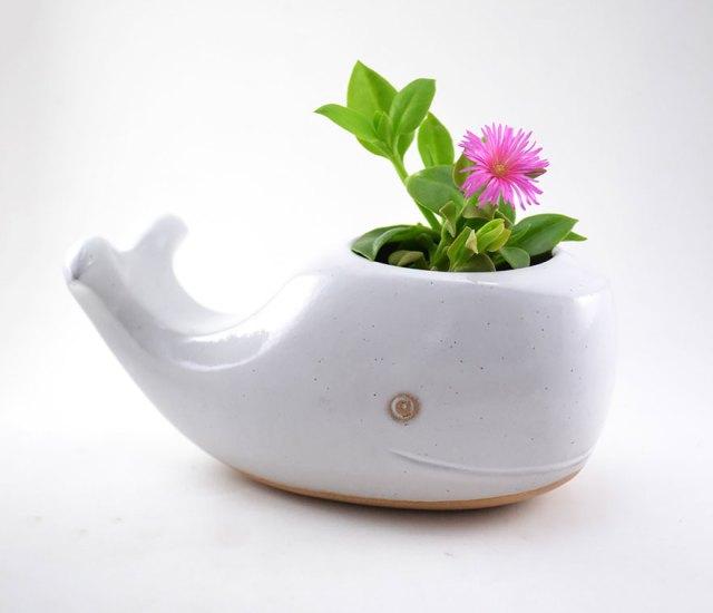 macetas-animales-ceramica-plantas-suculentas-priscilla-ramos (1)