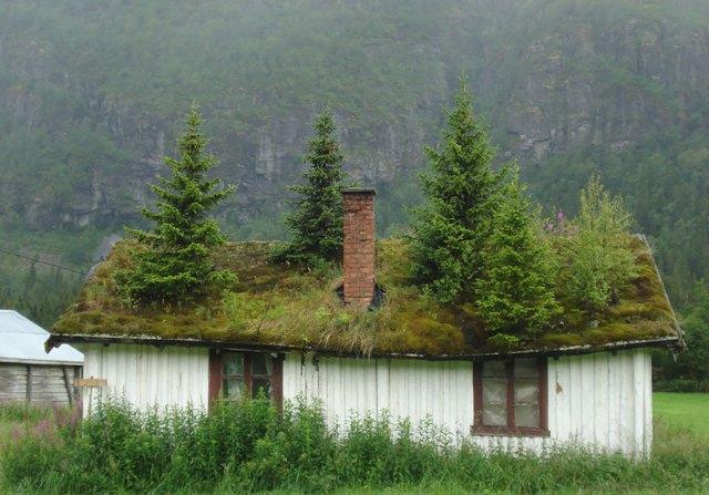 arquitectura-fantastica-noruega (9)