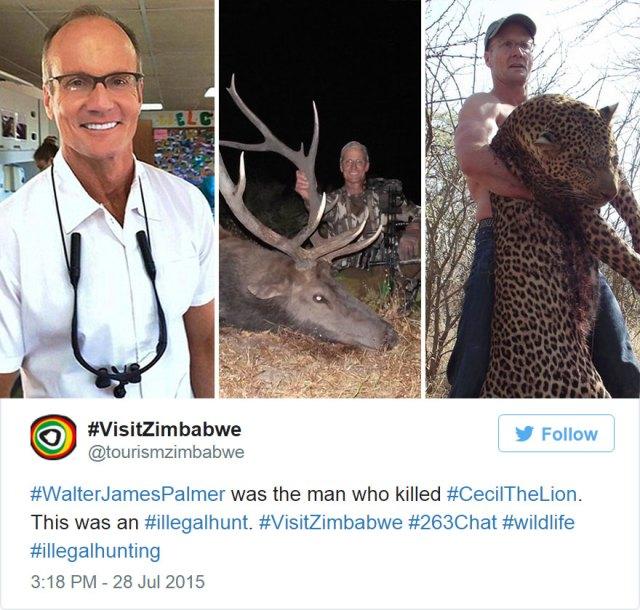 caza-ilegal-cecil-leon-zimbabue-walter-palmer (7)