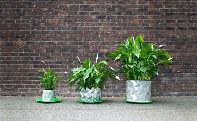 maceta-origami-plantas-crecimiento-studio-ayaskan (1)