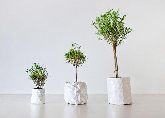maceta-origami-plantas-crecimiento-studio-ayaskan (5)