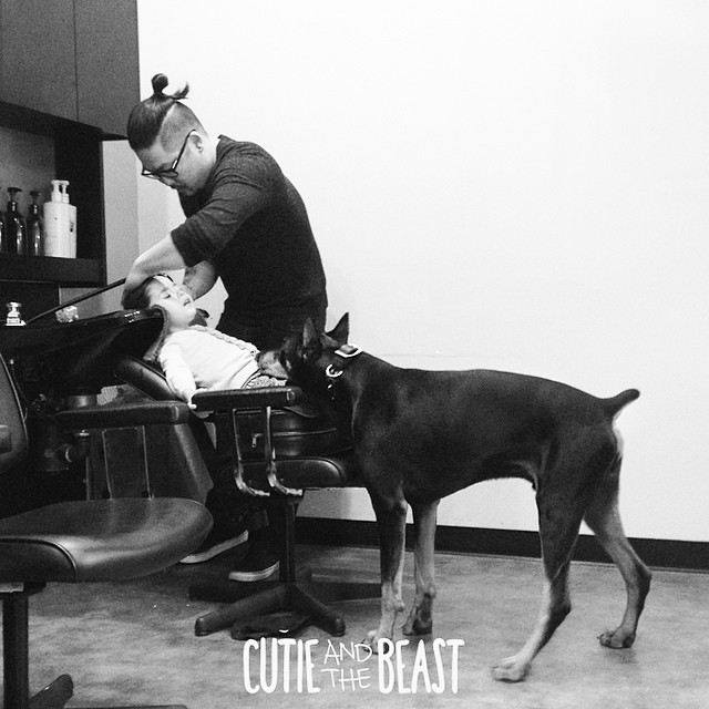 cutie-beast-nina-siena-perro-doberman-buddha (19)