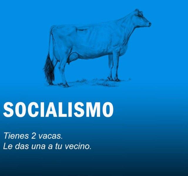 economia-explicada-vacas-2