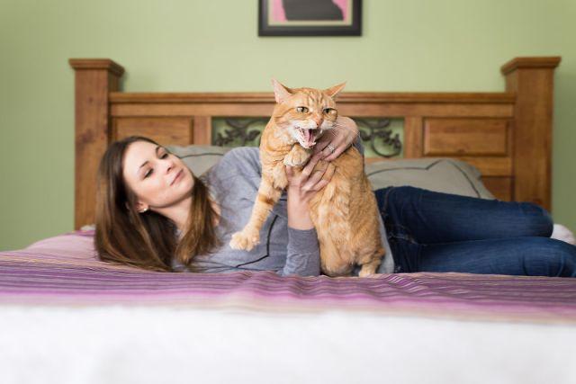 fotos-gatos-celebres-instagram-duenos-eeuu-meow-quarterly (11)