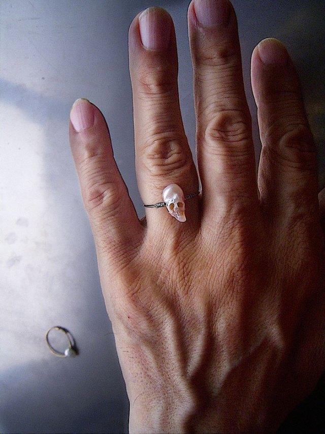 perlas-talladas-calaveras-vanitas-shinji-nakaba (5)