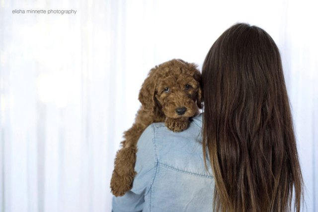 sesion-fotos-recien-nacido-perro-humphry-elisha-minette (7)