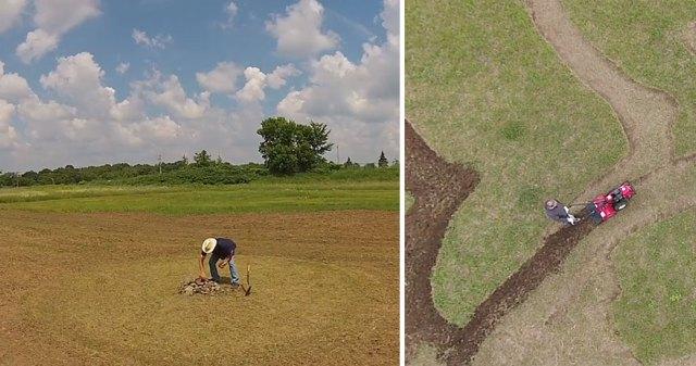 campo-plantado-pintura-van-gogh-olivos-stan-herd (2)