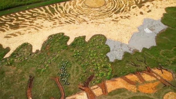 campo-plantado-pintura-van-gogh-olivos-stan-herd (3)