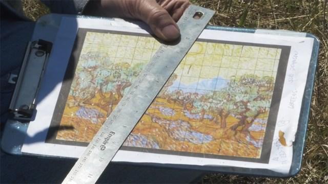 campo-plantado-pintura-van-gogh-olivos-stan-herd (5)