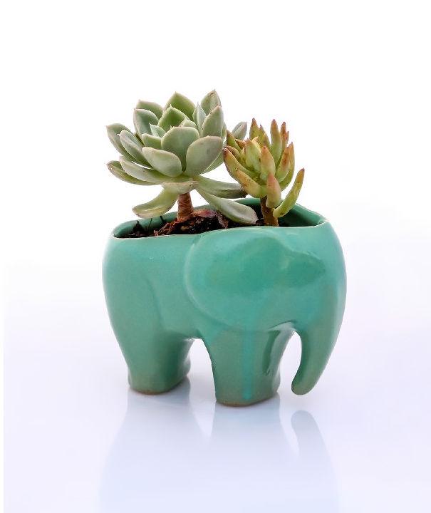regalos-amantes-elefantes (5)