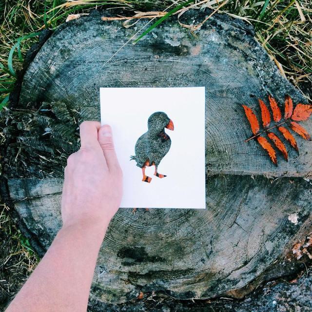 siluetas-animales-paisajes-naturales-nikolai-tolsty (10)