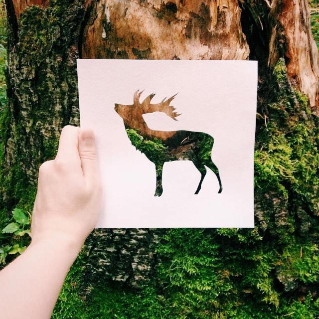 siluetas-animales-paisajes-naturales-nikolai-tolsty (8)
