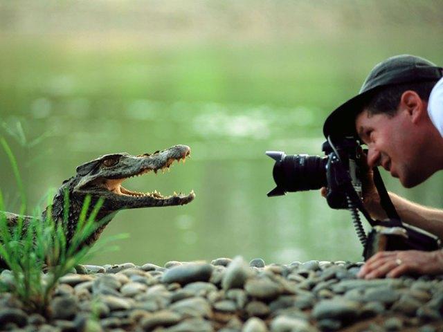 fotografos-naturaleza (26)