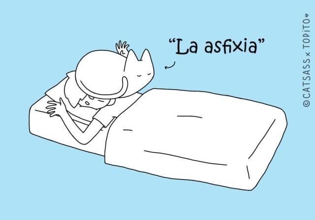 posturas-dormir-gato-catsass-4