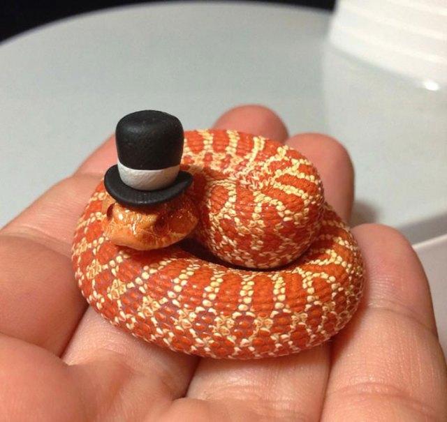 serpientes-llevando-sombrero (9)